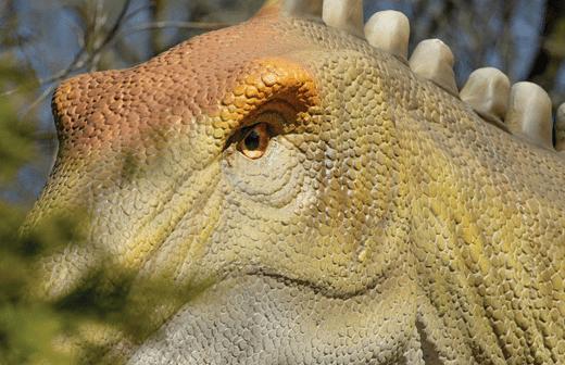 Philadelphia Zoo's Friday Nights Dinos and Bites